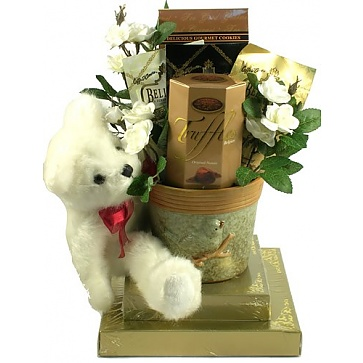 Beary Best Wishes Gift Basket